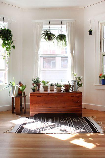 Untitled Pflanzen, Wohnideen und Wohnzimmer - Pflanzen Deko Wohnzimmer