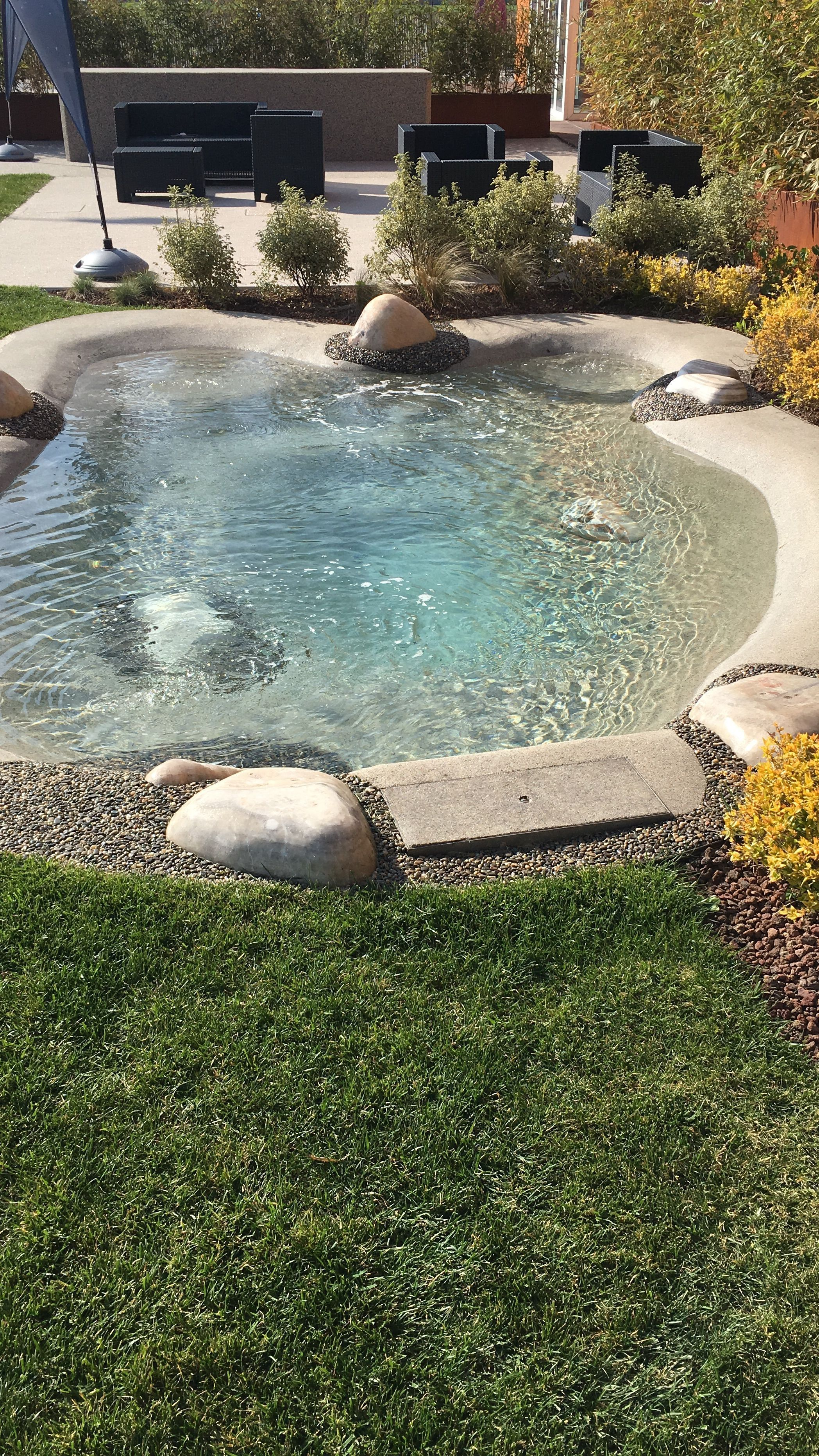 Pin On Small Backyard Ideas Backyard Pool Designs Backyard Beach Swimming Pools Backyard Mini pool in backyard