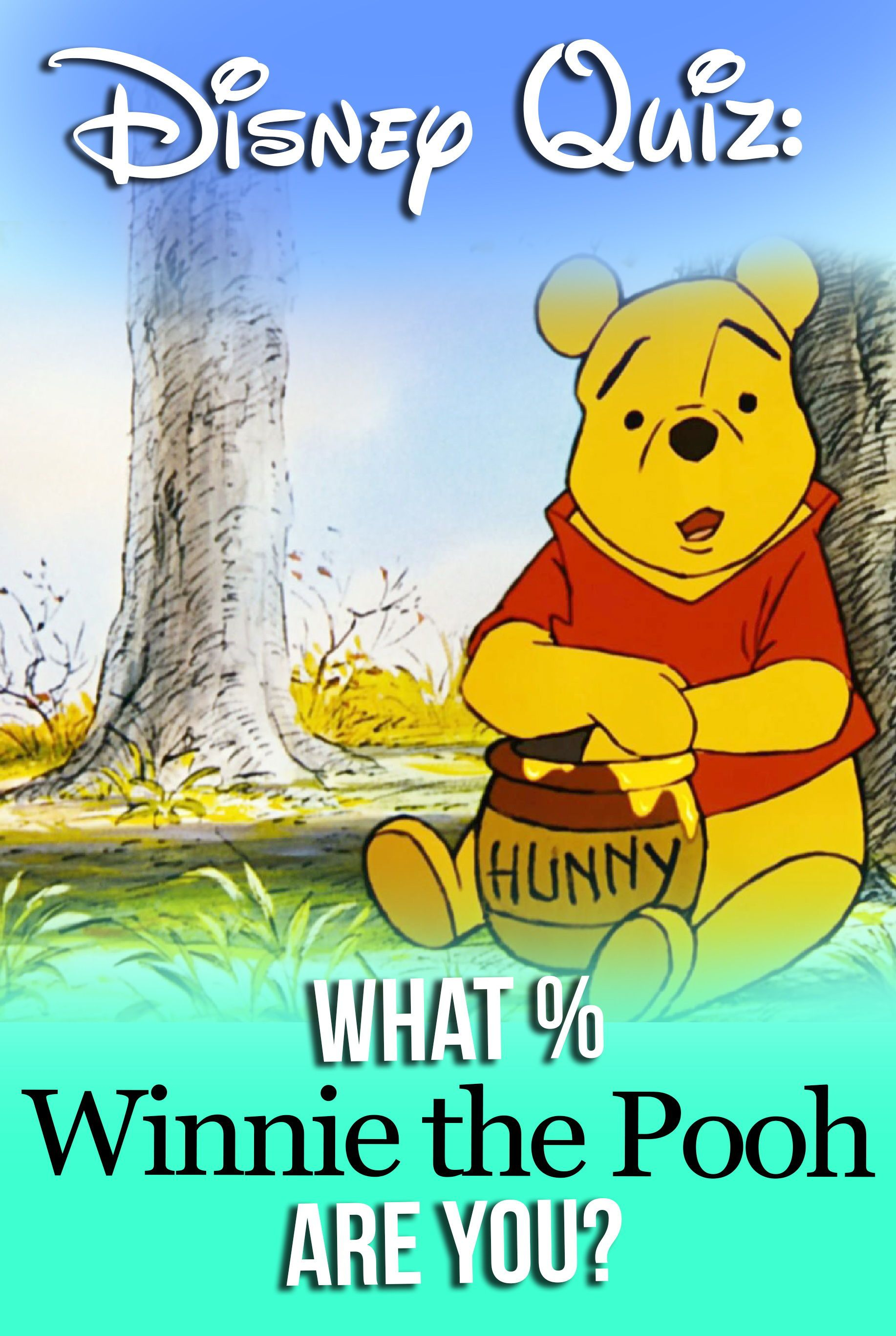 Disney Quiz What Winnie The Pooh Are You