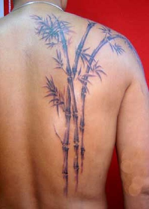 Bamboo Tattoo Related Keywords Suggestions Bamboo Tattoo Long