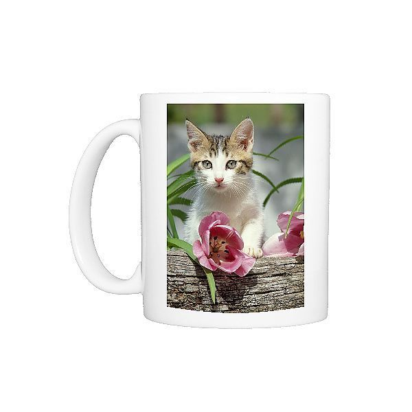 Photo Mug-FRR-280 CAT - Tabby-white kitten above pink tulip-Ceramic dishwasher safe mug made in the UK