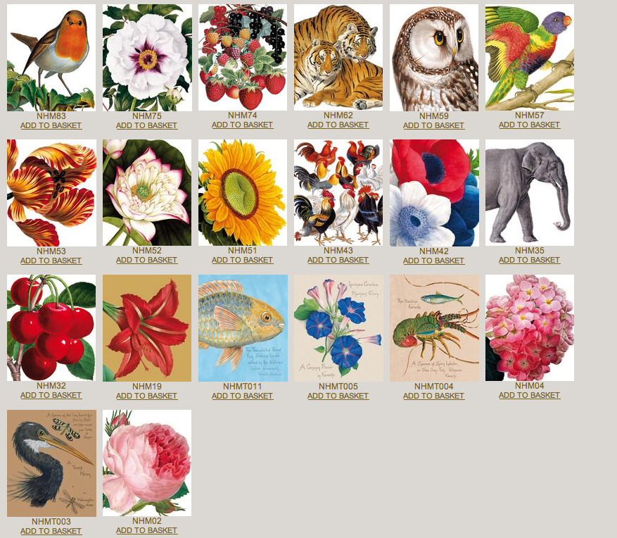 Natural history museum archivist gallery greeting cards good natural history museum archivist gallery greeting cards m4hsunfo
