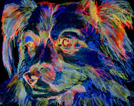 Frameless Digital Painting 40x50cm DIY Painting by Number Kits Oil Paint Drawing Canvas Home Decor Gift Border Terrier