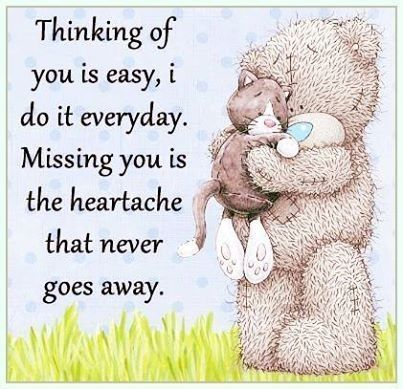Thinking Of You Is Easy I Do It Everyday Teddy Bear Quotes Tatty Teddy Bear Quote