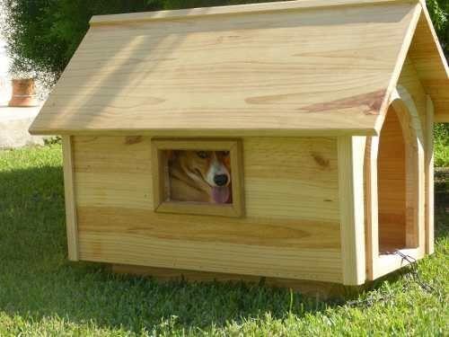 Rooms Designed for Pets Costa Rica- Habitaciones Diseñadas p…