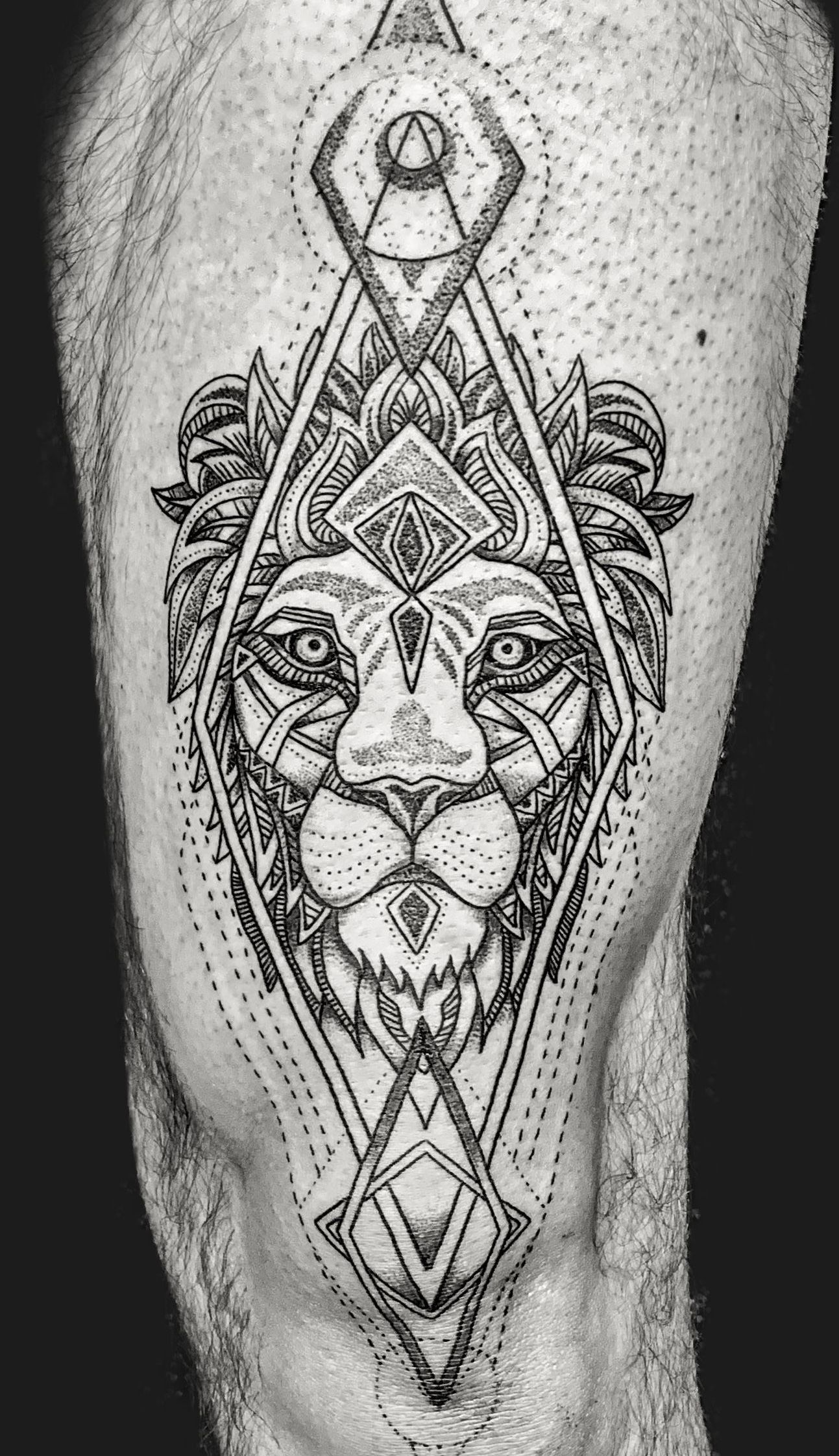 Lion Tattoo On Leg For Men Lion Tattoo Sleeve Leg Tattoos Tattoos For Guys Lion Leg Tattoo