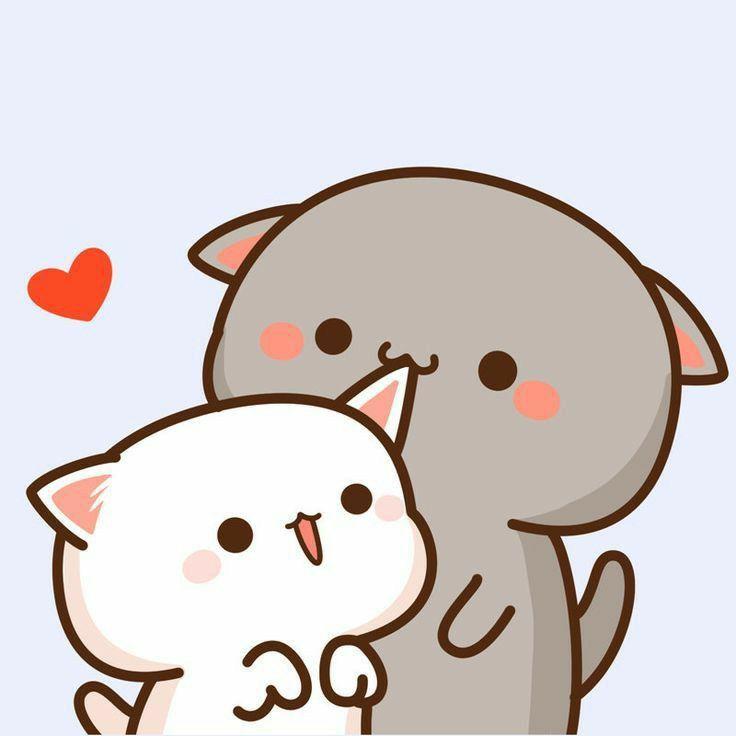 Couple Wallpaper Kucing Aesthetic Love Novocom Top