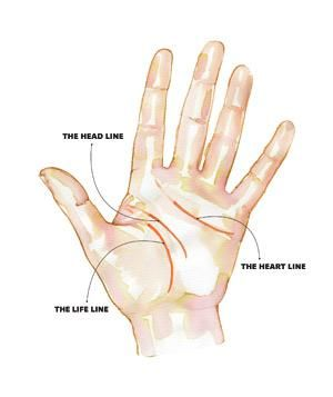 A Guide To Palm Reading Lines Diagram Palm Reading Palmistry Palm Reading Lines