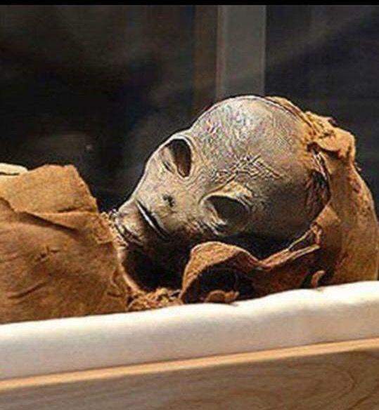 Este ser fue encontrado enterrado en un sarcófago en una de las piramides de Egipto