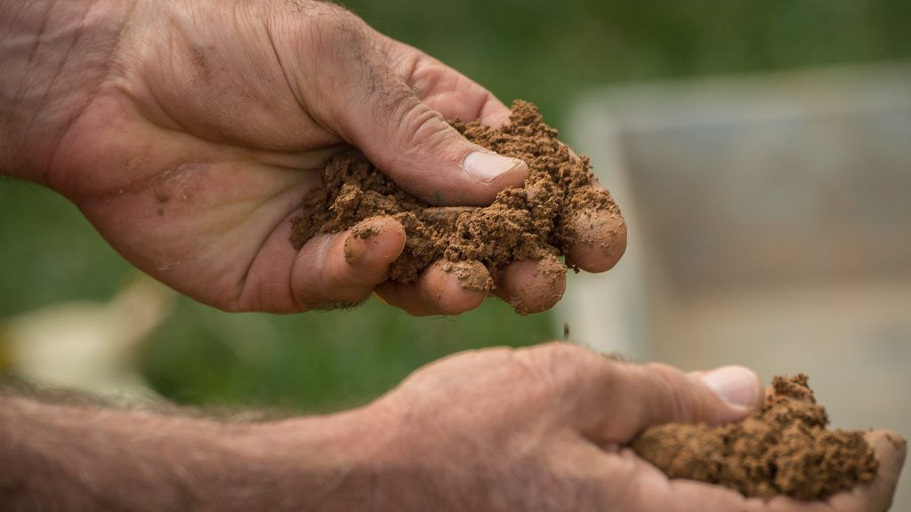 Tips on how to amend certain soil conditions