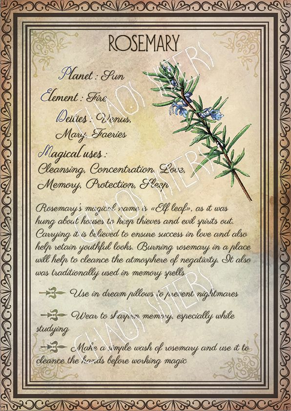 #witch #herbs #rosemary #printable #BookOfShadows #greenwitchcraft