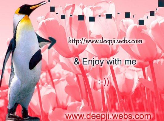 Website Designing Company In Siliguri West Bengal India We Provide Website Designing Web Appl Website Design Web Application Development Business Promotion