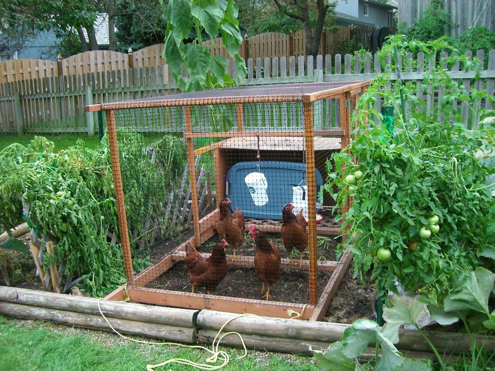 backyard ve able garden design ideas