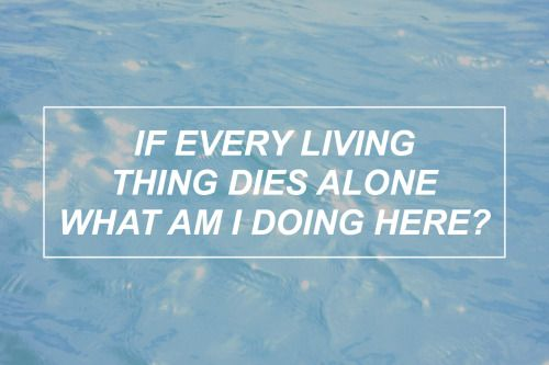 Disasterology // Pierce the Veil