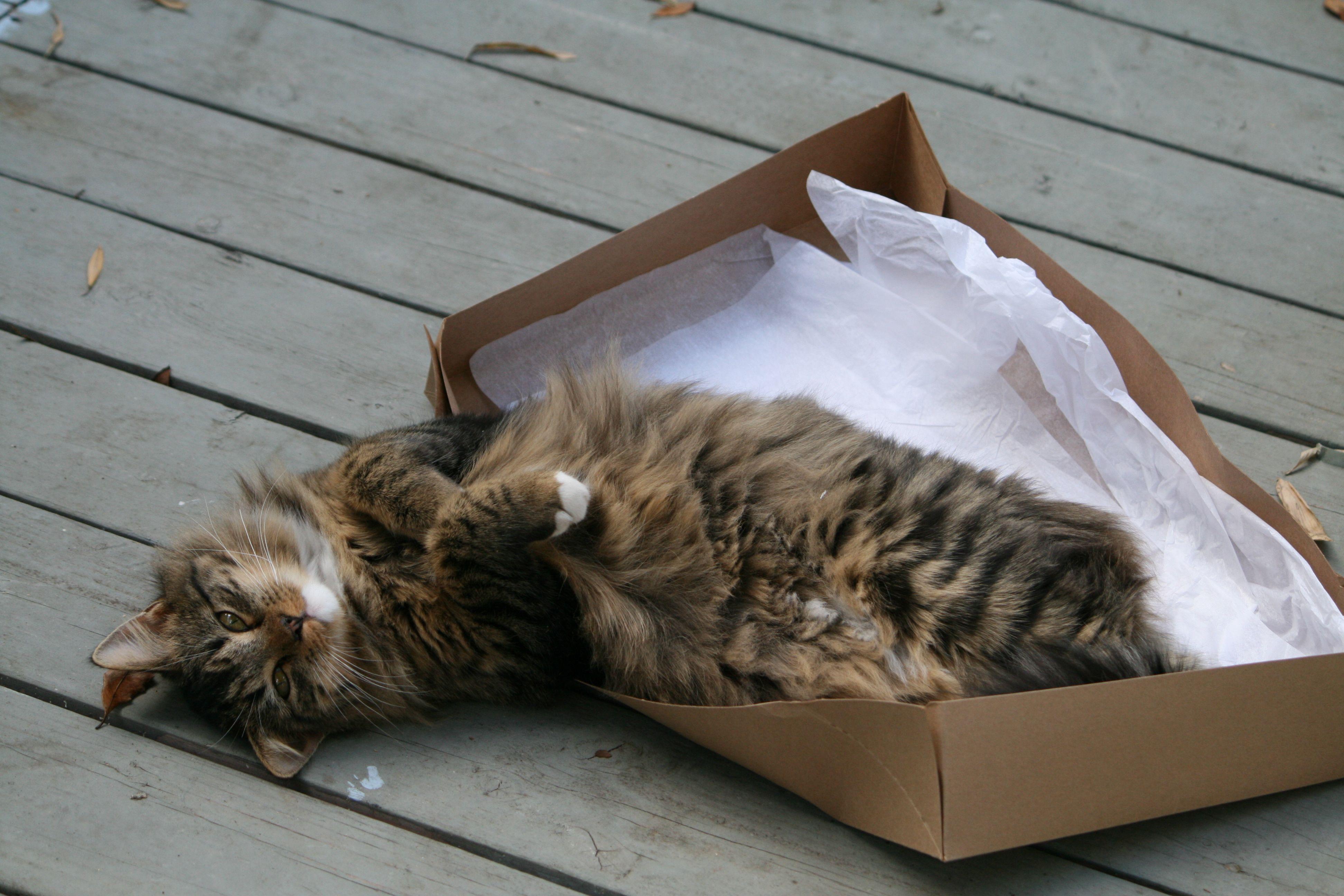 in a box.........