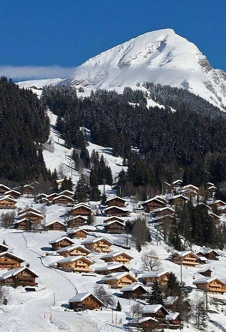 Les Diablerets in OrmontDessus Canton of Vaud Switzerland by