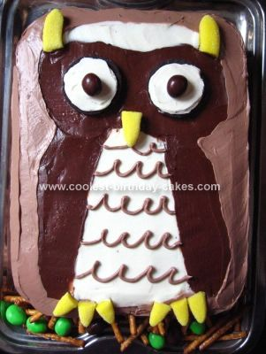 Coolest Owl Birthday Cake Owl birthday cakes Birthday cakes and Owl