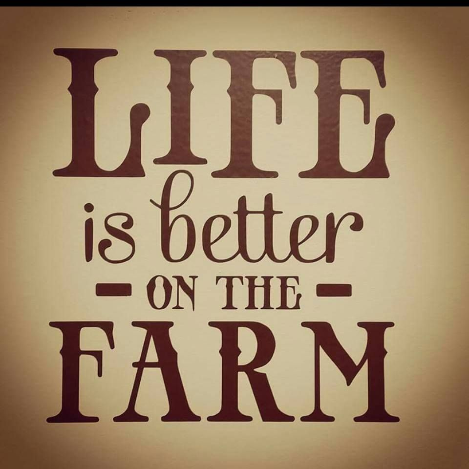 Ag Quote Pinbayer Crop Science Us On American Farming  Pinterest .