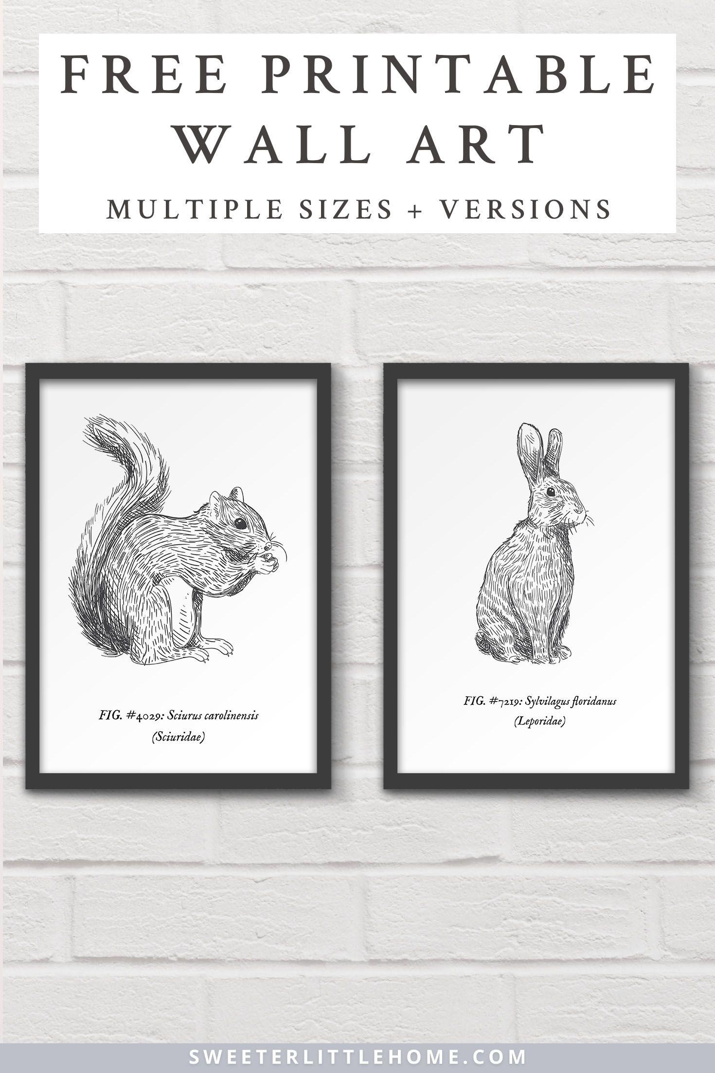 Free Printable Woodland Animal Wall Art