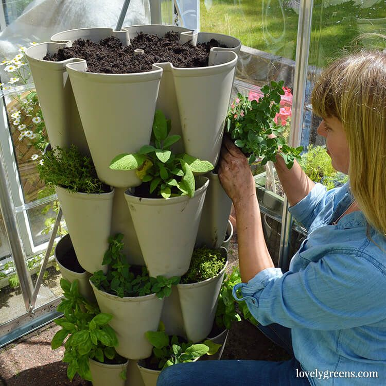 Attractive Grow A Vertical Garden In A Greenstalk Stackable Planter. Itu0027s An  Easy Water Stackable Planter For Herbs, Vegetables, Strawberries, And  Flowers.