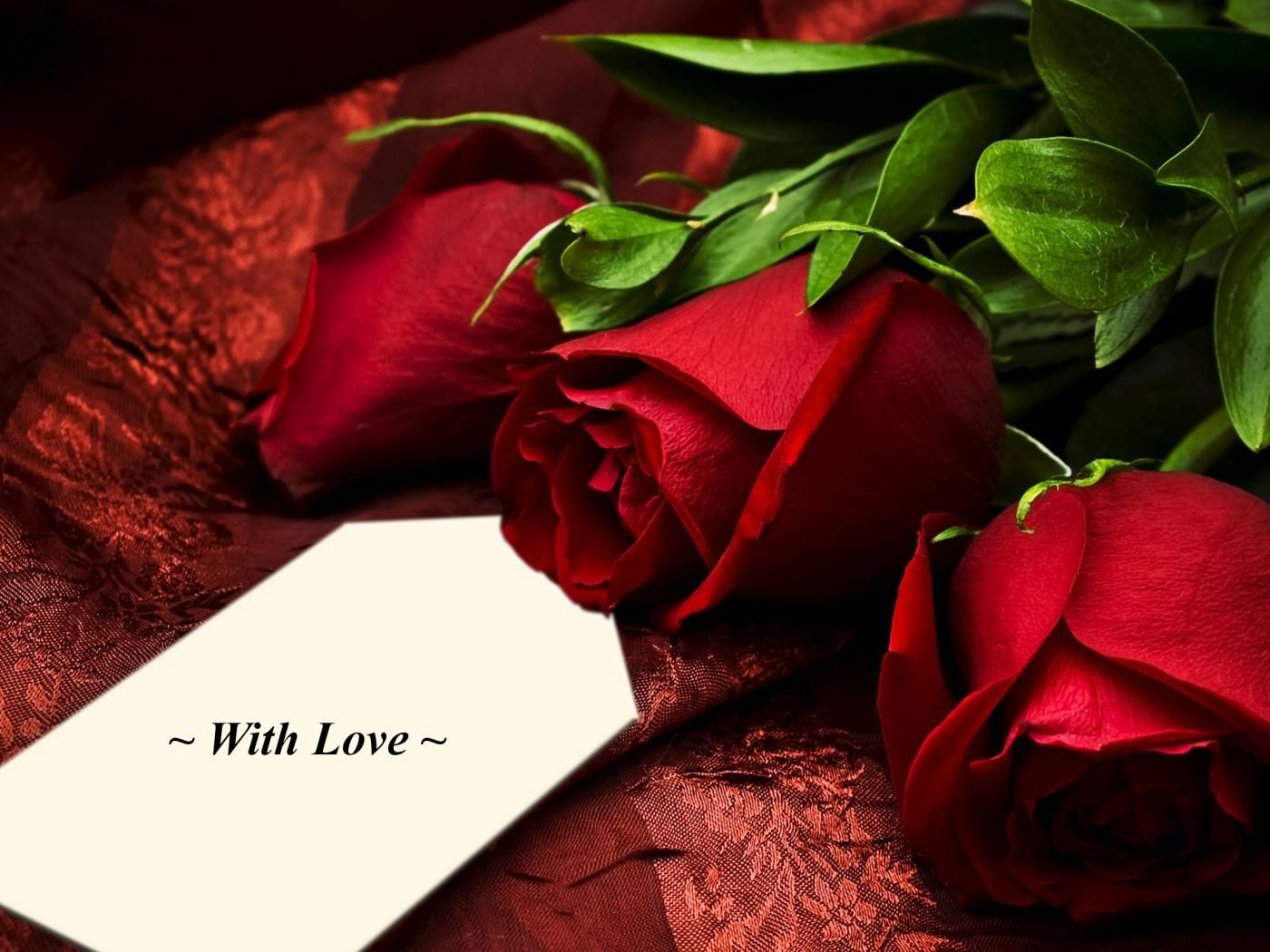 Not Every Flower Can Say Love But A Rose Did What A Lovely Thing A Rose Is Beautiful Red Roses Images Rose Day Wallpaper Beautiful Rose Flowers