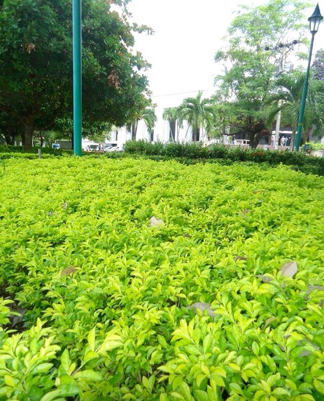 Parque Los Fundadores, Barranquilla