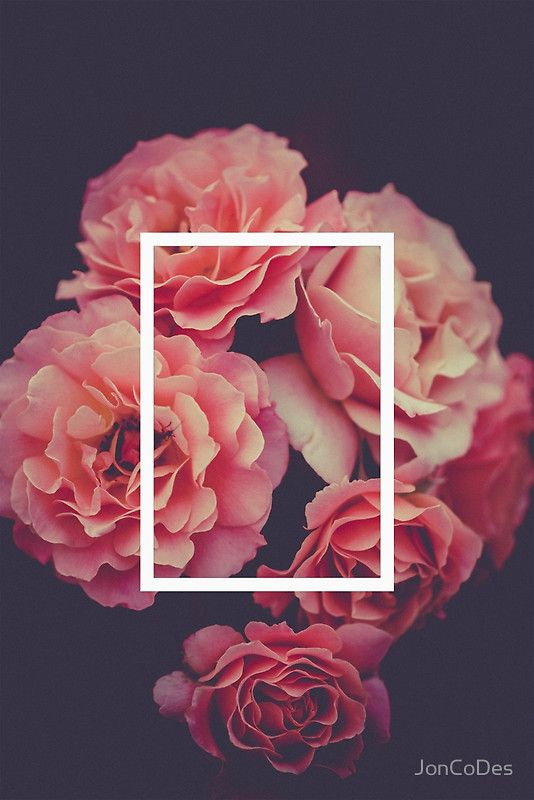 The 1975 Floral Rectangle Things For My Wall Pinterest