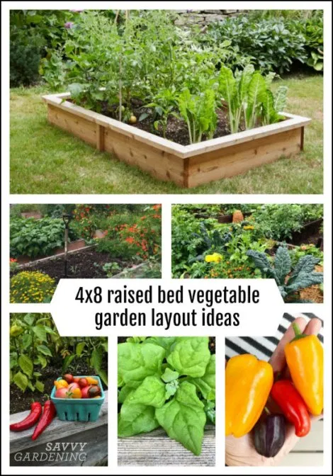 Staggering 4x8 Raised Bed Vegetable Garden Layout 29