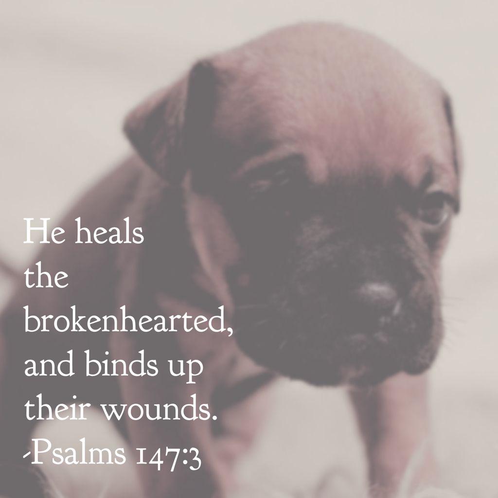 Psalms 147:3 NKJV | I Believe | Great bible verses, God