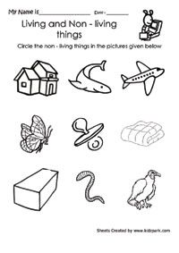 Free Printable Living And Non Living Worksheets For