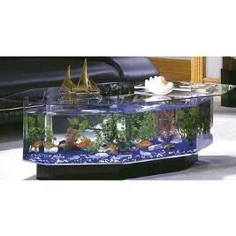 fish tank coffee table. [www.skymall] | [animals] here fishie