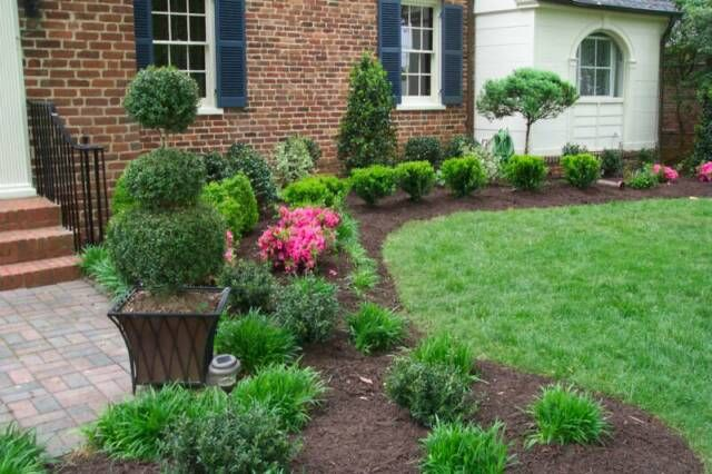 Good Bushes for Landscaping | VA Landscape Design, Landscape ...