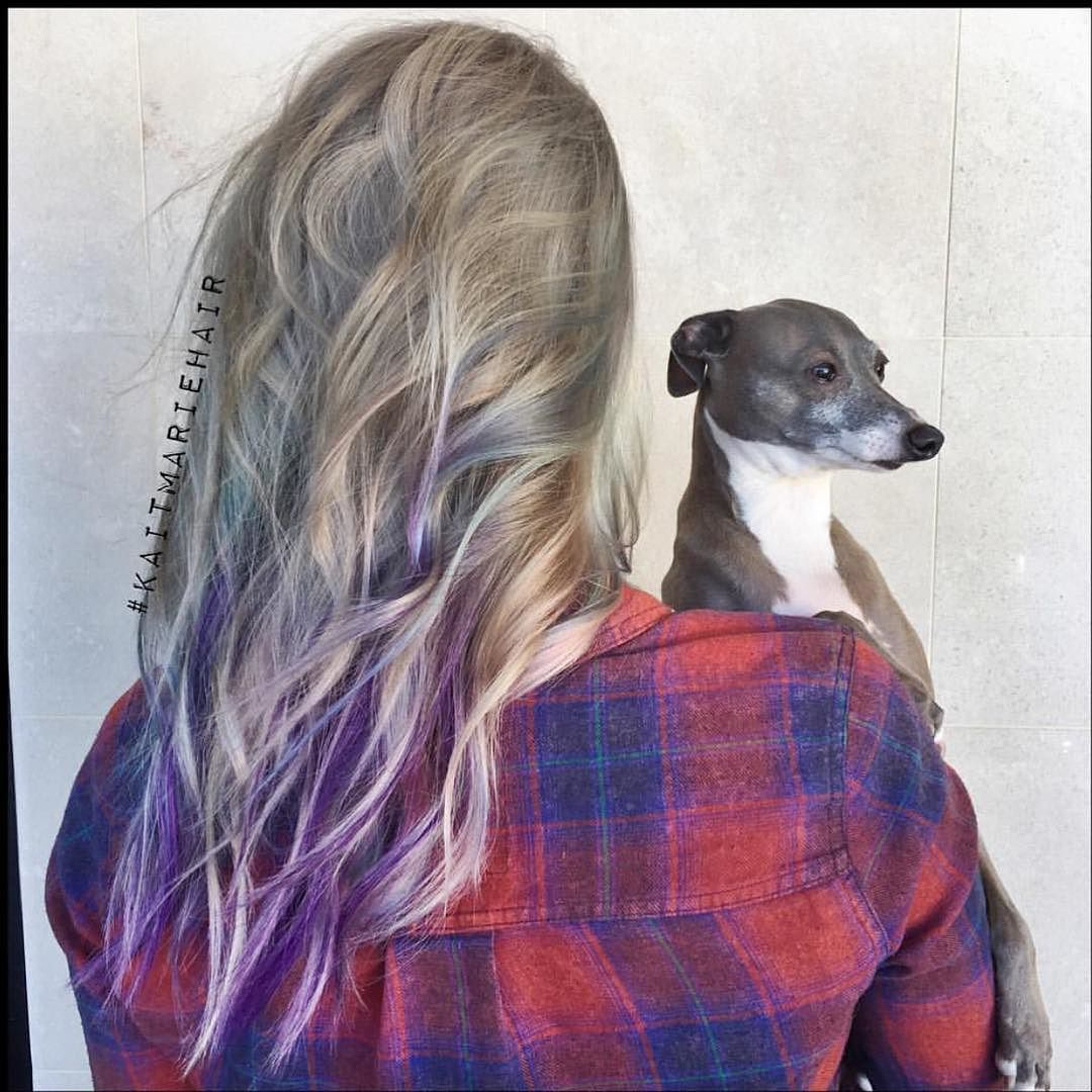 Thank you so much @kaitmariehair for this awesome silver purple opaly awesomeness and thanks @pravana for your really nice note and products to keep my hair happy and for making these beautiful colors exist. Also thanks Kermit for hangin out the whole time and actually being a good boy for once. I was honestly shocked. by jennamarbles