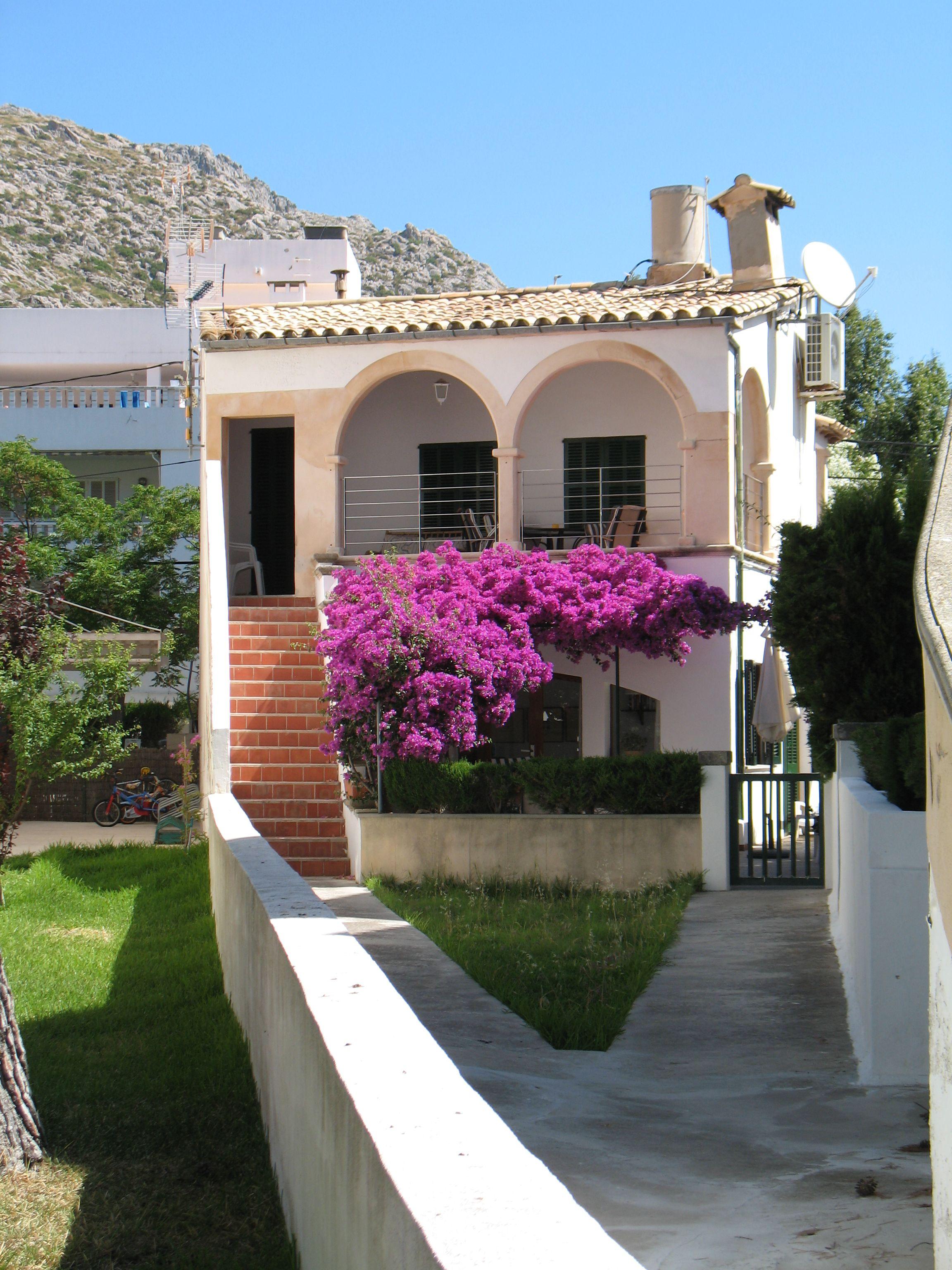 Bougainvillea In Puerto Pollensa Islas Baleares Palma De Mallorca Mallorca