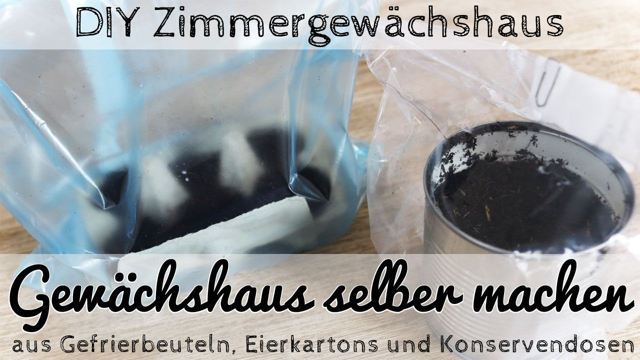 Diy Zimmergewachshaus Selber Basteln Diy Garten Food Und