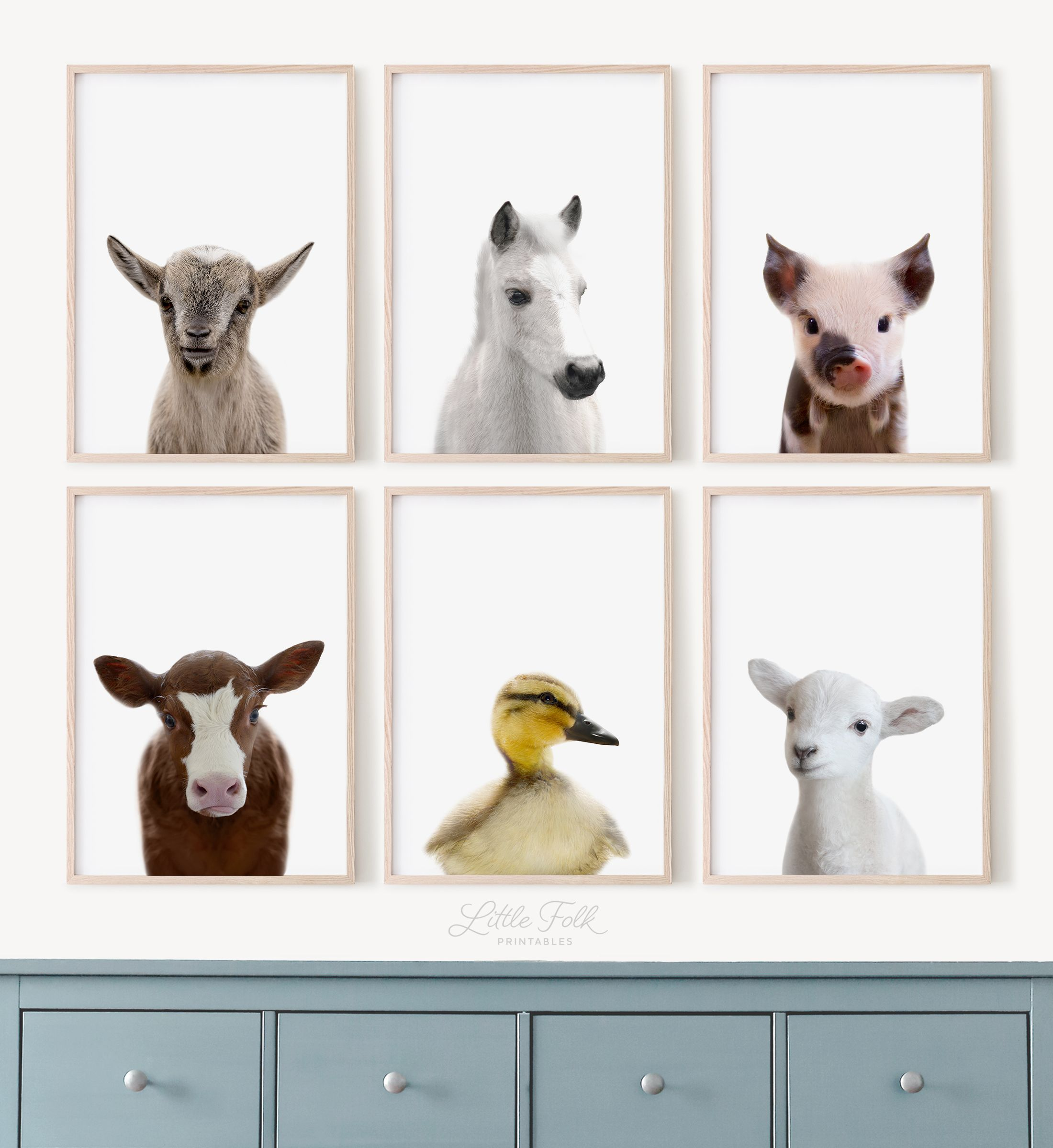 Printable Baby Animal Pictures