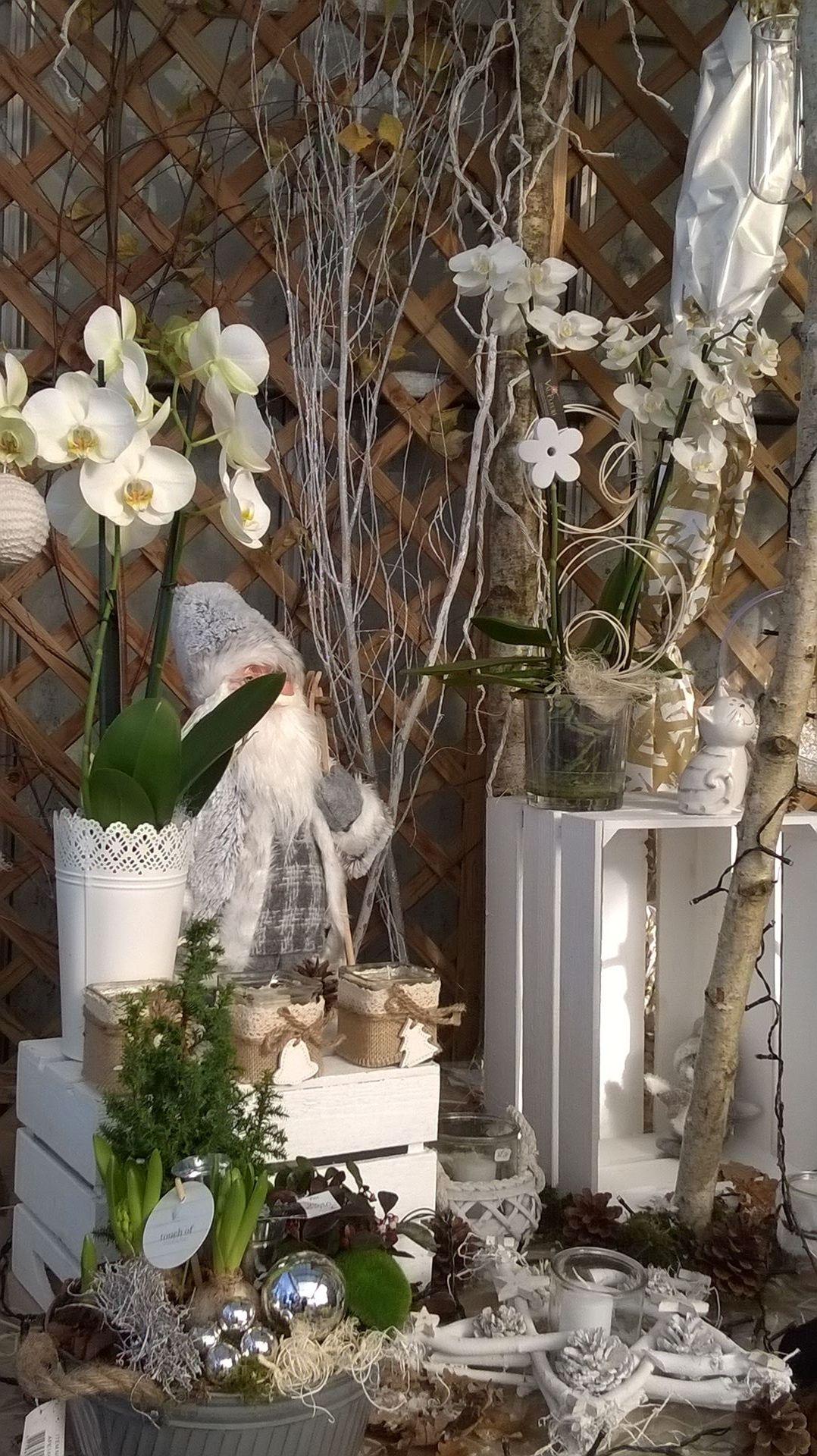 Deco vitrine noel fleuriste rs08 jornalagora - Decoration de noel naturel ...