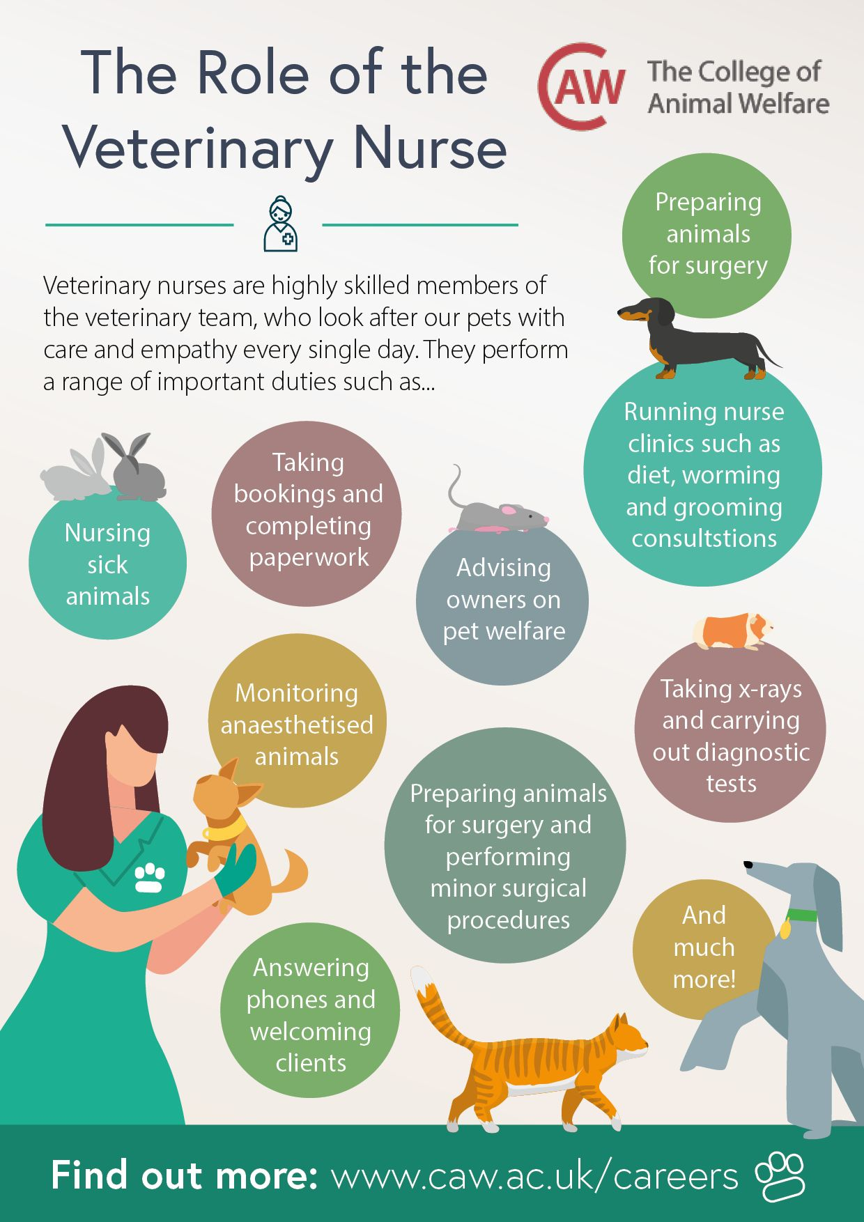 Veterinary Nurse Job Description in 2020 Nurse job