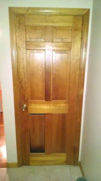 Hidden Pet Door In Panel Door Home Pinterest Pet Door Doors