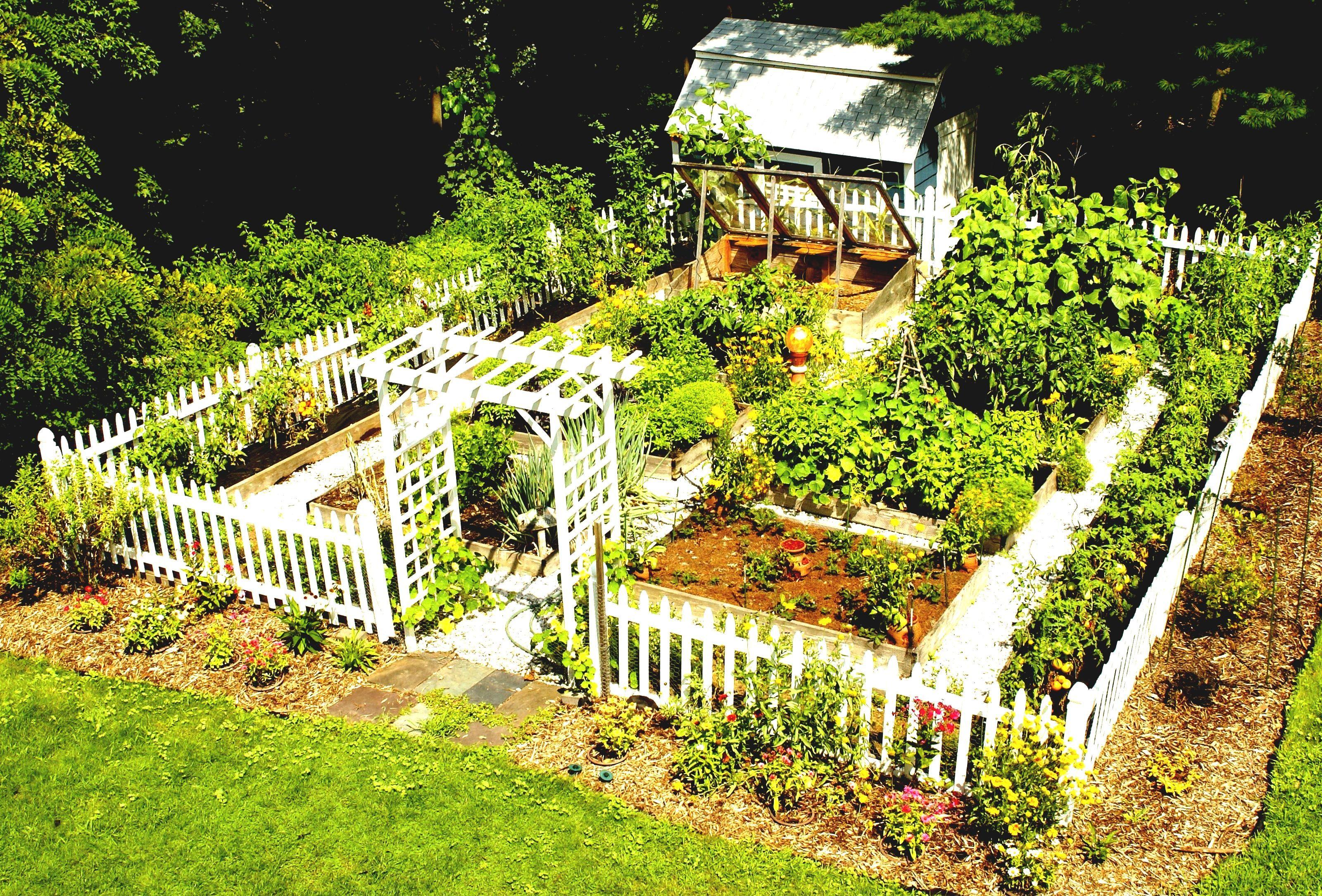Die Besten Gemüse Garten Design Ideen Auf Pinterest