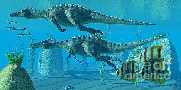 36+ Weewarrasaurus information