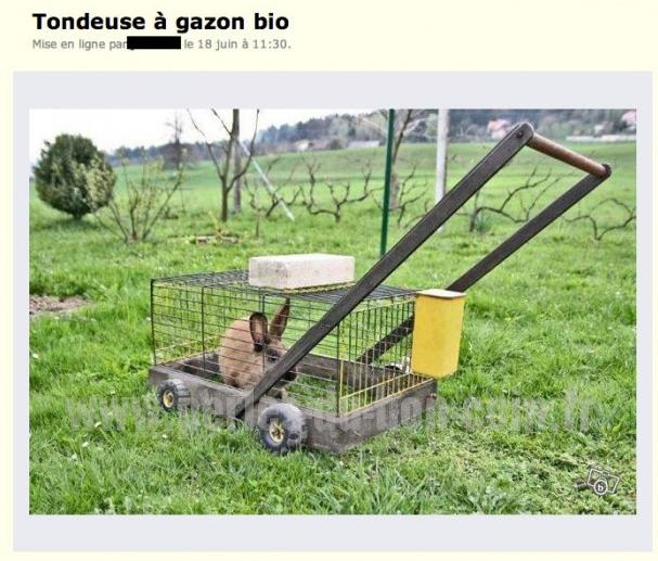 Ce Macgyver Du Jardinage Qui A Mis Ca En Vente Sur Le Bon Coin Avec Images Tondeuse Gazon Humour Gazon