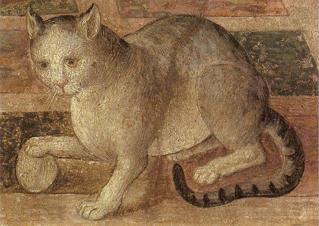 Chat Cat Painting Cat Art Renaissance Art