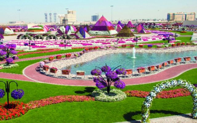 N A Y Fashion Dubai Miracle Garden حديقة دبي المعجزة Miracle Garden Different Types Of Flowers Palm Beach Gardens