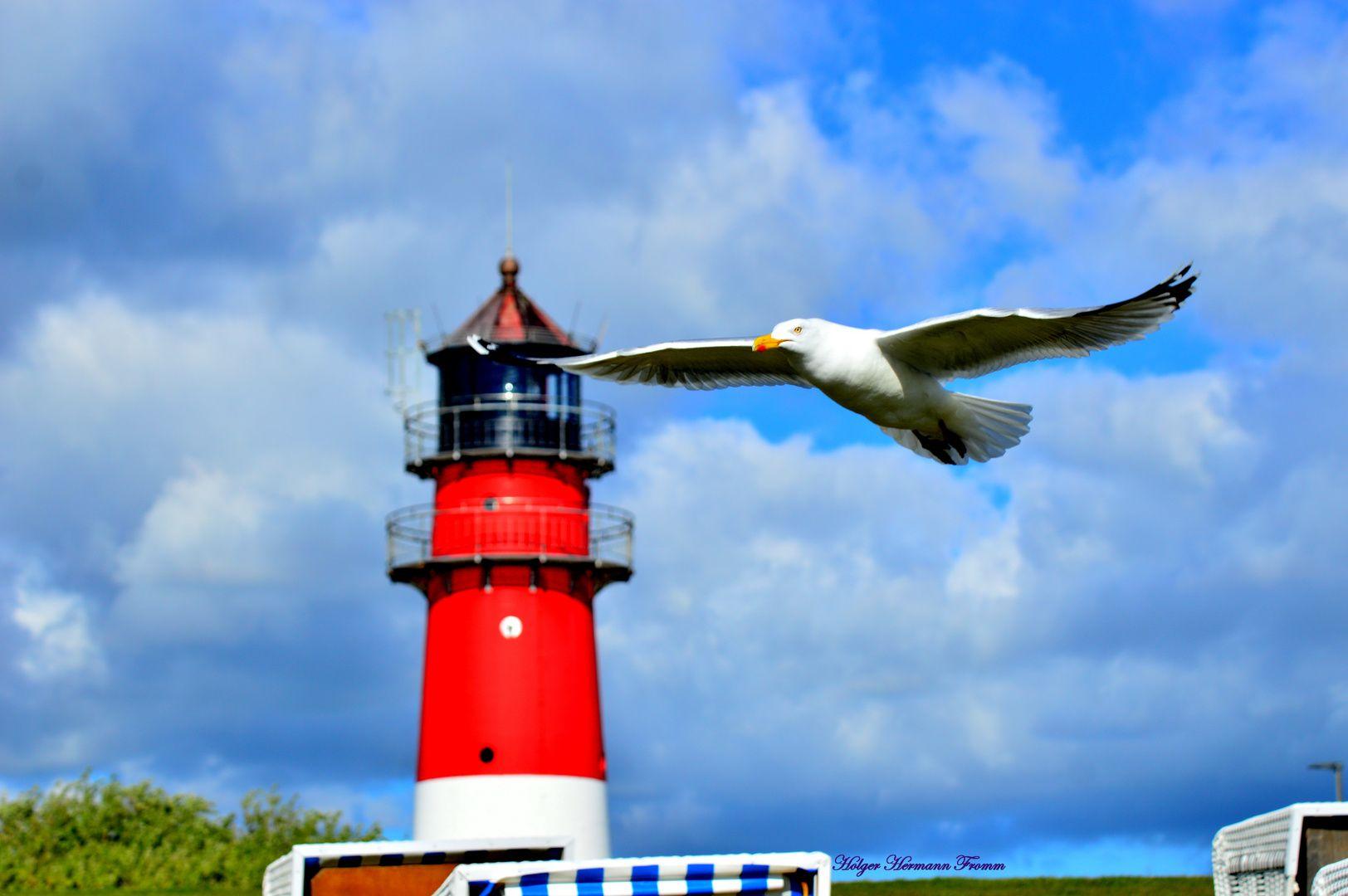 Nordsee Feeling Move Am Leuchtturm In Busum Leuchtturm Turm Nordsee