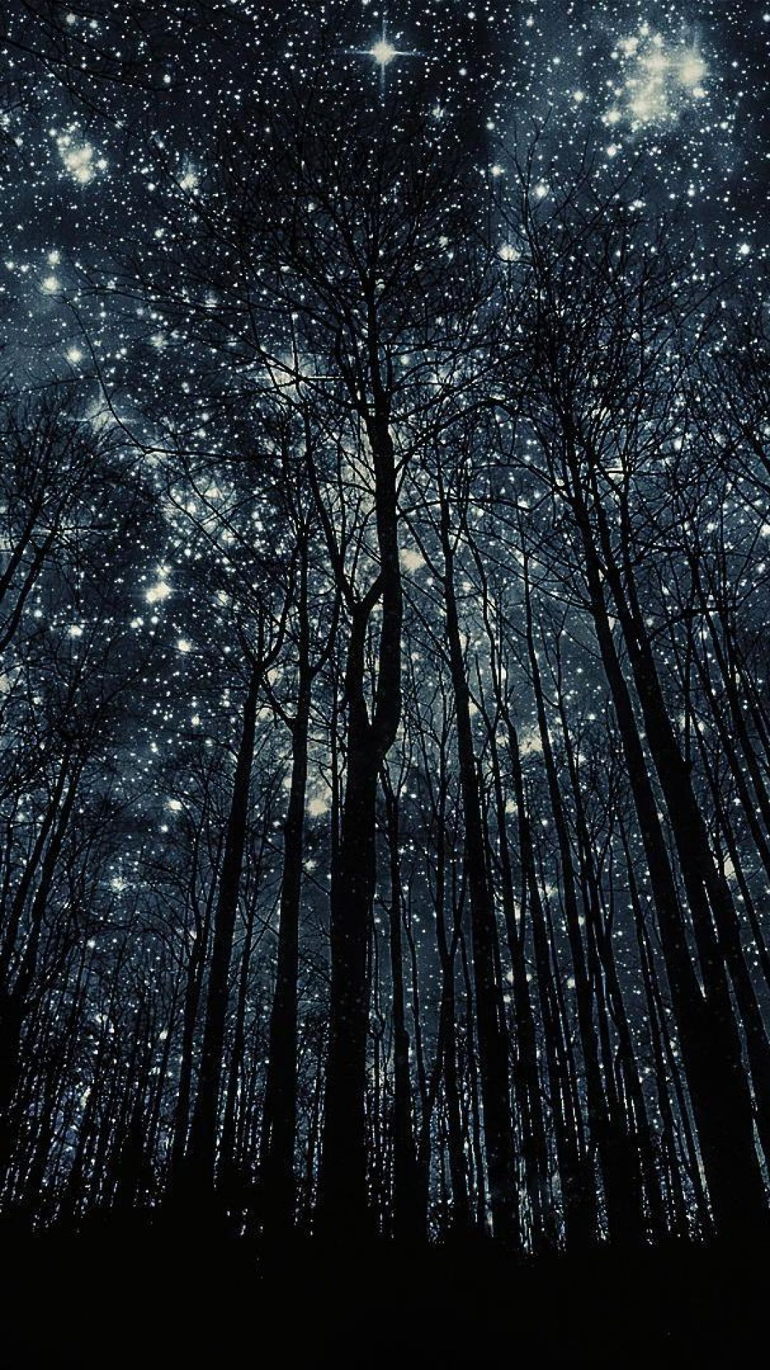 Forest Nigth Full Of Stars S5 Wallpaper Id 41811 Android