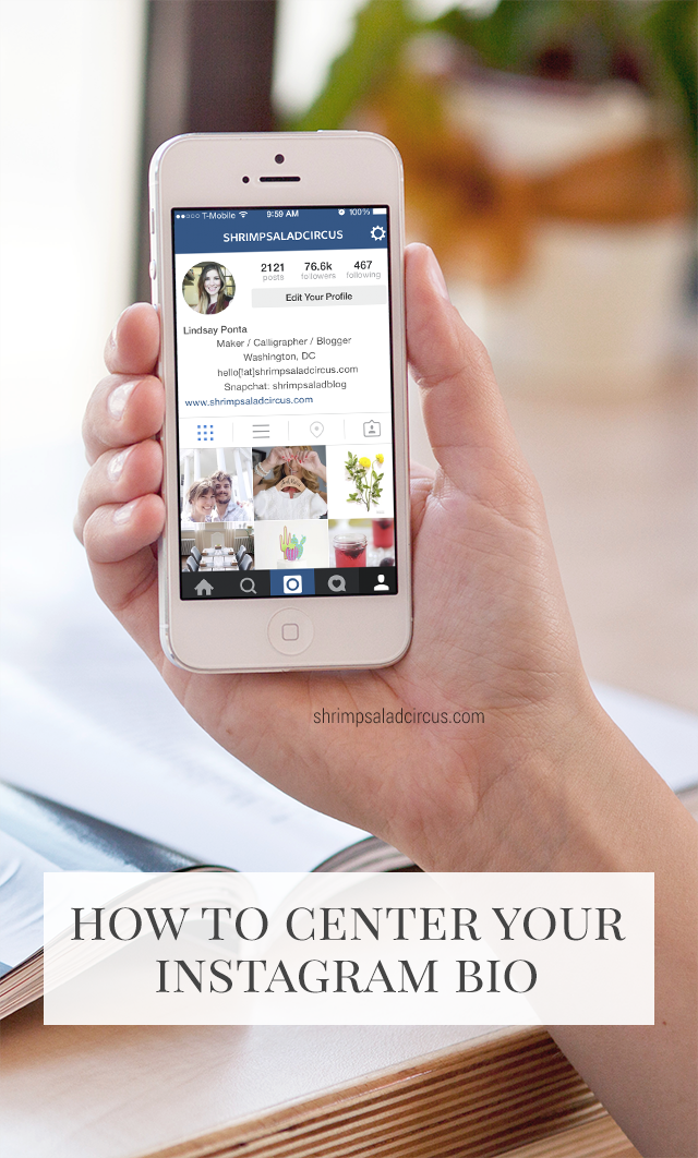 How to Center Your Instagram Bio – Blog Better | BLOGGING