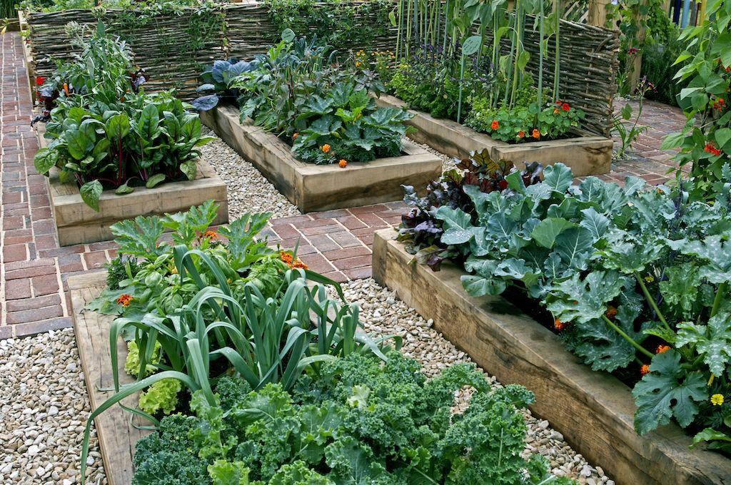 畑 庭 仕切り の画像検索結果 エクステリア 庭 お庭