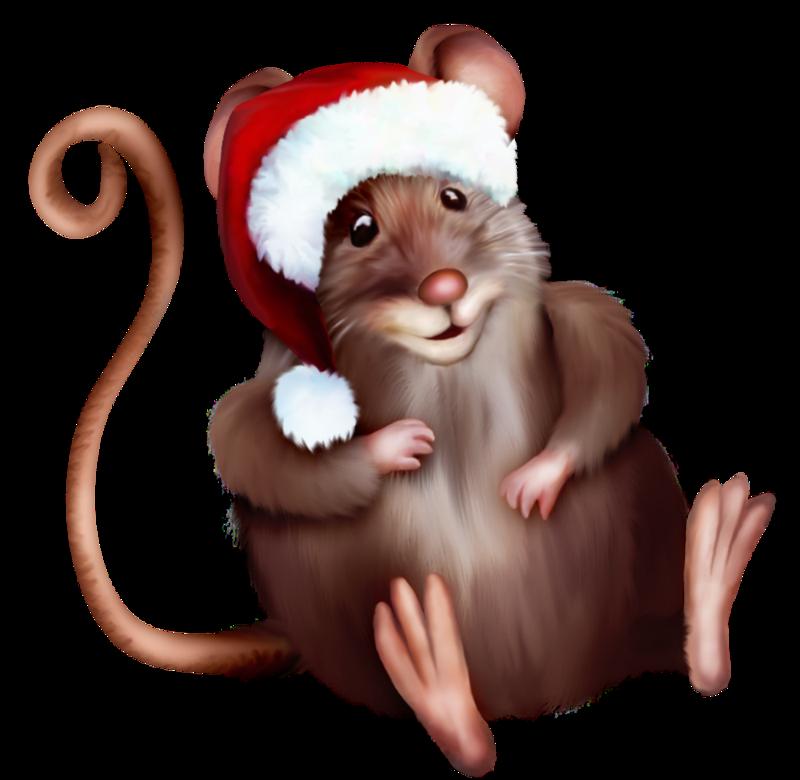 Новогодние картинки с надписью с крысой наглядно