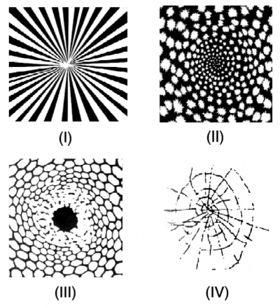 When math meets nature: Turing patterns and form constants